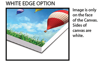 White Edge Option